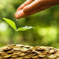 Hand watering a young green plant growing on a pile of golden coins / Business with csr practice and environmental concern